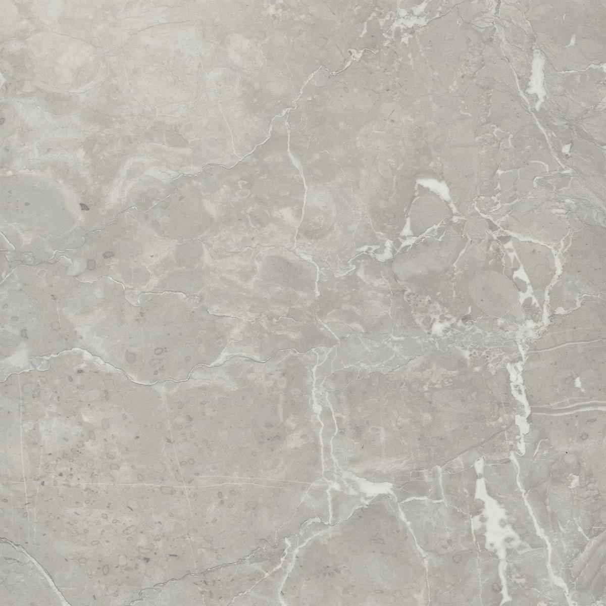 Light Grey Valmasino Marble F074